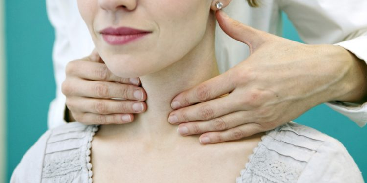 Thyroid: what it is, dysfunctions, treatment and prevention